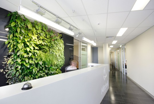 Mitchell Group HQ Interiors